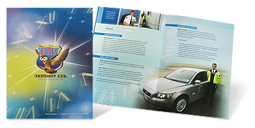 Romex Security Brochure