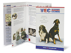 Veterinary Emergency Clinic Brochure