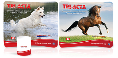 Integricare Animal Health – TRIACTA – Reversible Booth