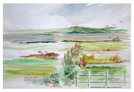 Stella Jurgen Sketch: Lakelands Farm B&B, Waterville, Ireland