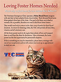 VEC Emergency Clinic Poster