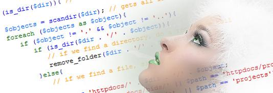 PHP web design, PHP development